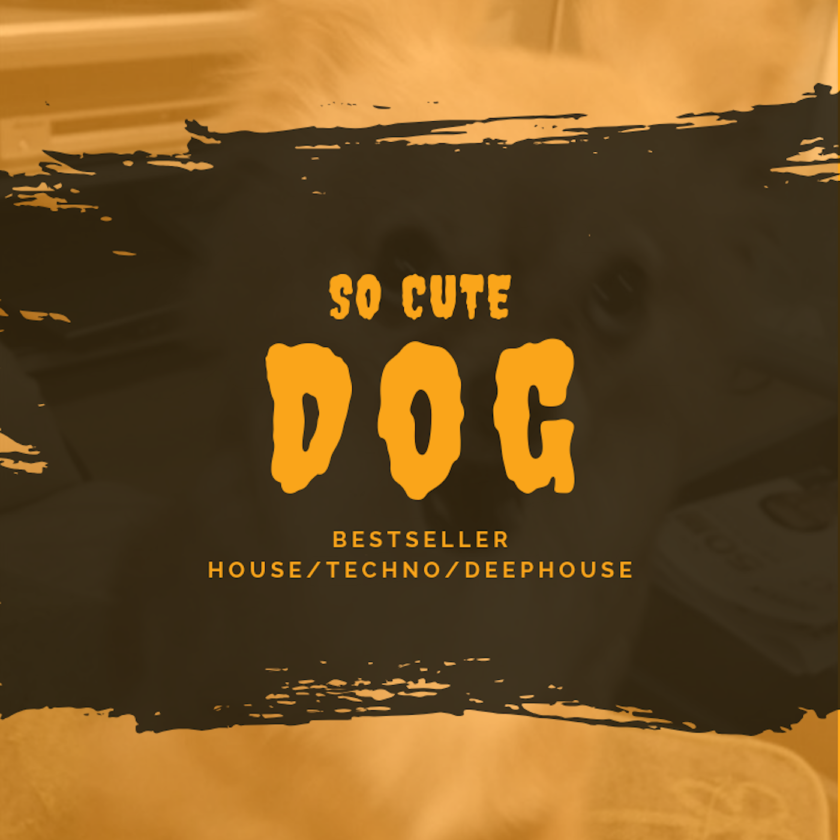 So Cute Dog - BESTSELLER